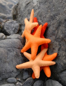 Wool Felt Starfish