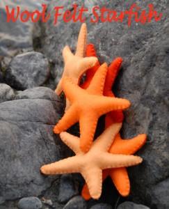 starfishfelttitle